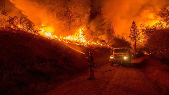 Forest's fire in California